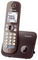 Panasonic Telefone KX-TG6811GA 1