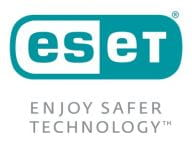 ESET Anwendungssoftware EMDS-N1A5-V13M 1