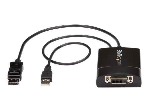 StarTech.com Kabel / Adapter DP2DVID2 4