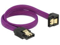 Delock Kabel / Adapter 83695 2